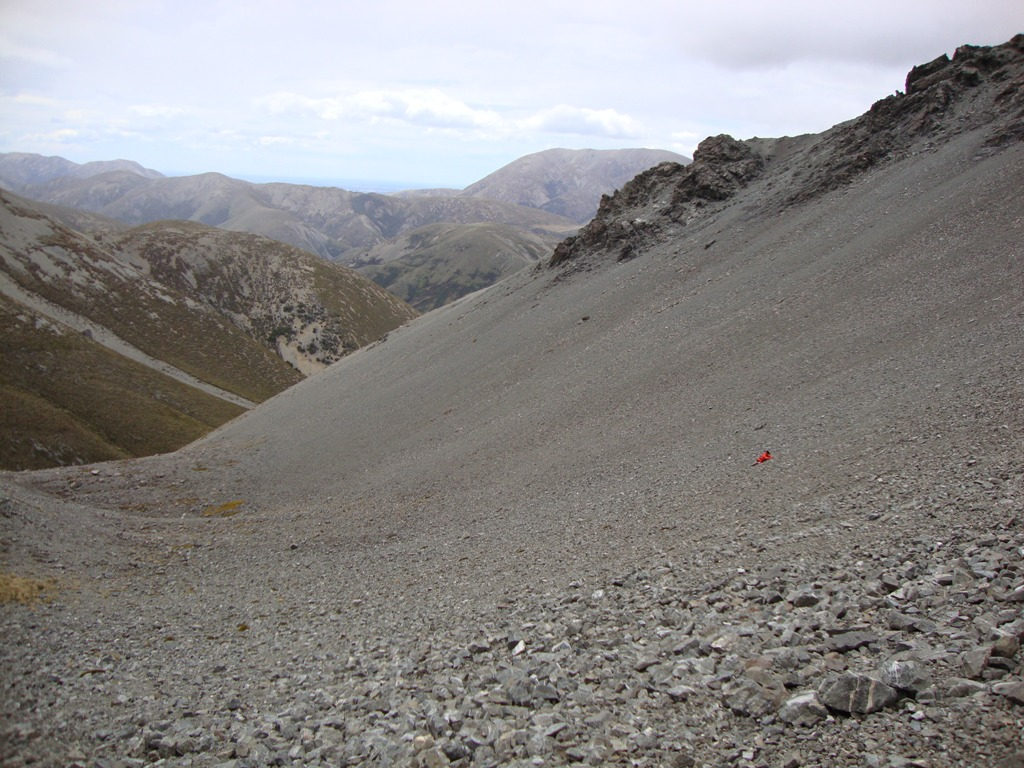 new zealand scree01